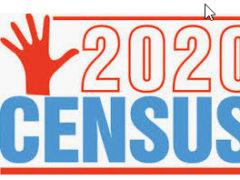 Census Mini Grant